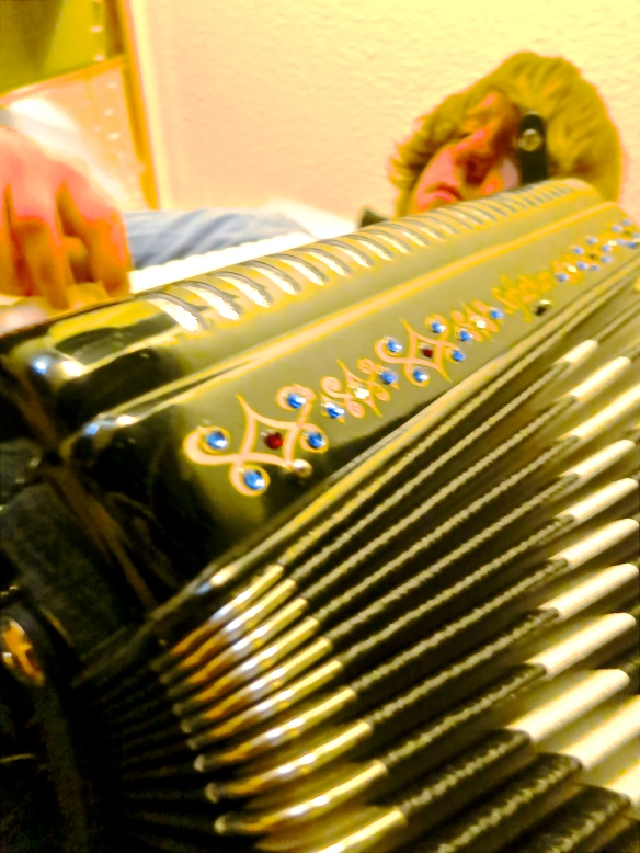 A-Accordion Song 05-28-13 best version
